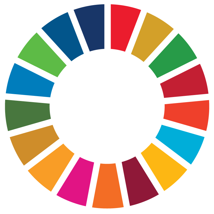 sdg_icon_wheel_rgb1